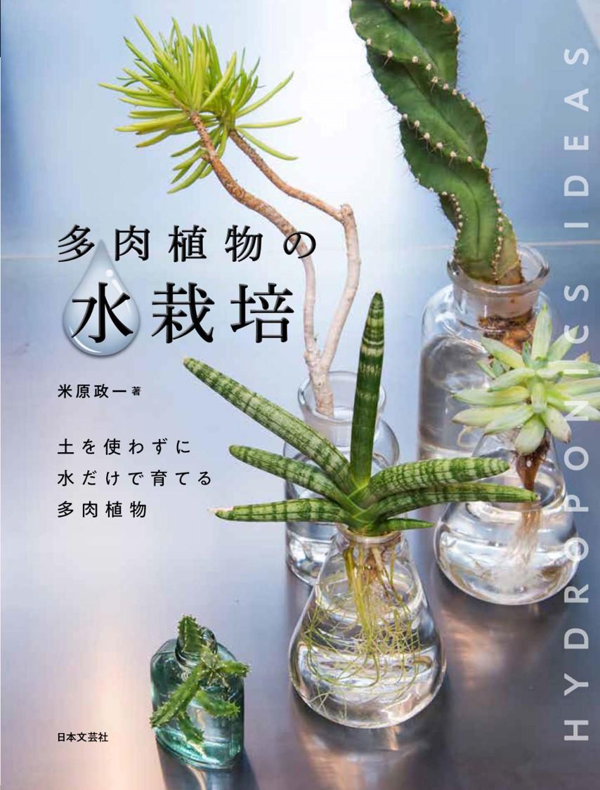 お部屋で緑を育てたい 水だけの栽培スタイル