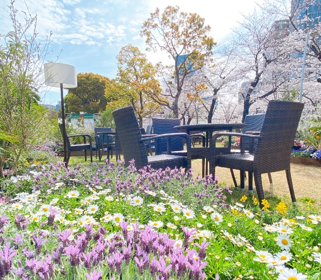 花々に囲まれた春らしい食卓 東京ミッドタウンの屋外ラウンジ