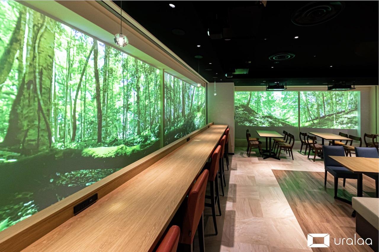 コロナ禍の東京で、北海道の大自然に癒やされる デジタル技術で森林空間