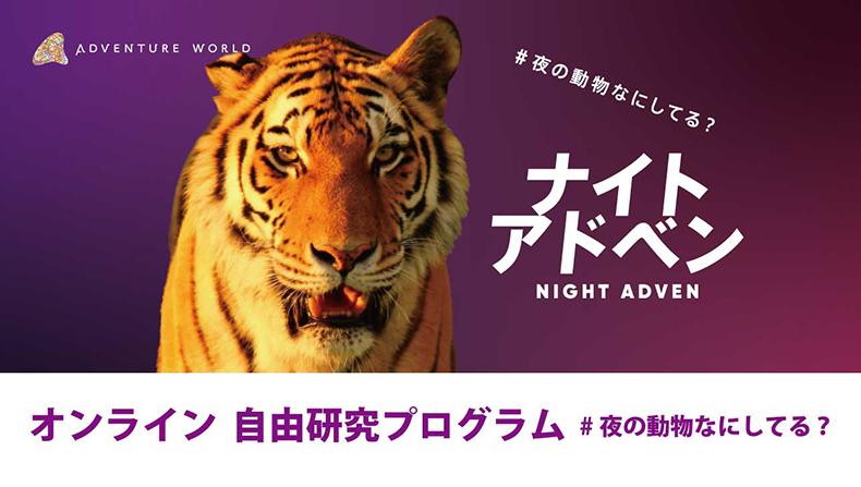夜の動物って何してるの? 和歌山・アドベンチャーワールドがオンライン自由研究プログラム