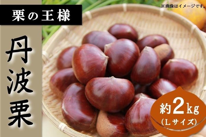 栗の王様、兵庫県産「丹波栗」を通販で 産地直送サイト「JAタウン」で販売開始!