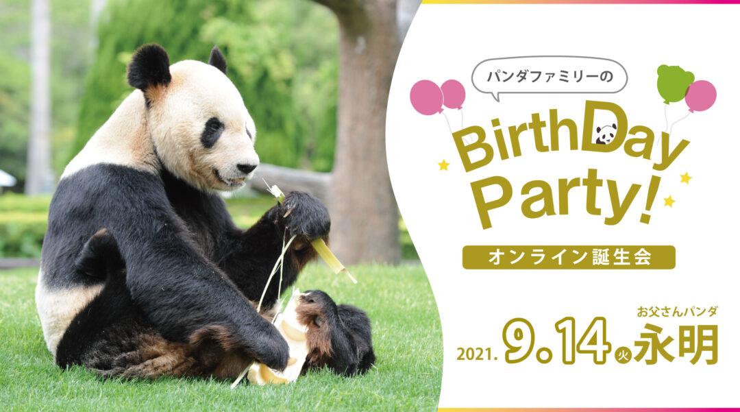 伝説のお父さんパンダの29歳を祝うオンライン誕生会 和歌山・アドベンチャーワールドが9月14日に開催