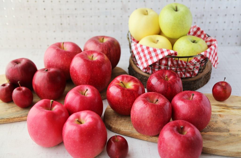 りんご好き集まれ! 試食しながらオンラインで学べる講座開催