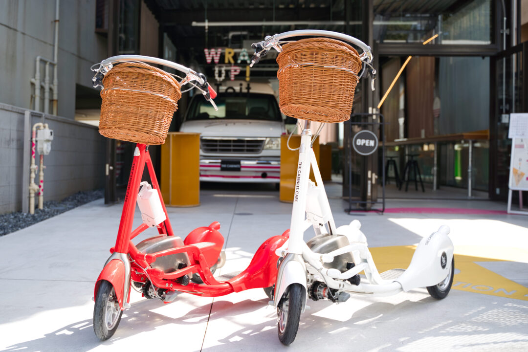 ウォーキングバイシクルで街を散策 新感覚の乗り物レンタル