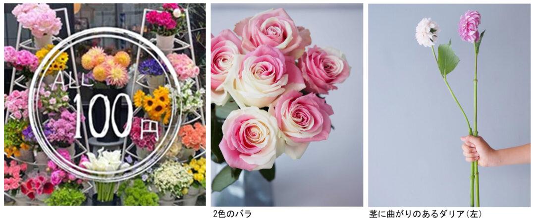 規格外の生花を安価で楽しもう 東京・表参道でチャンスフラワー販売