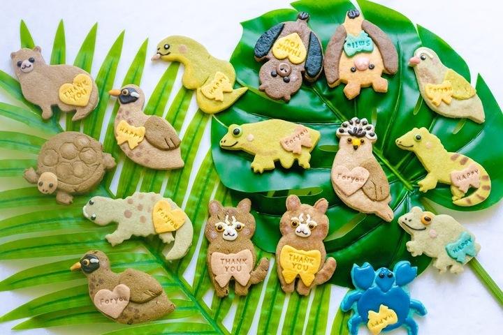 イリオモテヤマネコ、ヤンバルクイナ、マングース… 沖縄の固有種がクッキーコレクションに